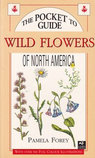 Image for Pocket Guide to Wild Flowers of North America