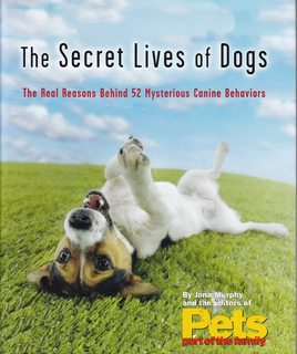 Image for The Secret Lives of Dogs, The Real Reason Behind 52 Mysterious Canine Behaviors