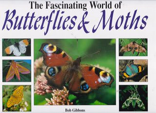 Image for Fascinating World of Butterflies & Moths