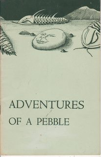 Image for Adventures Of A Pebble (Museum Stories)