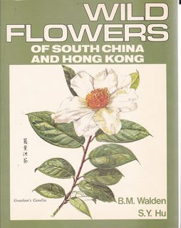 Image for Wild flowers of Hong Kong Around the Year. Paintings of 255 Flowering Plants from Living Specimens