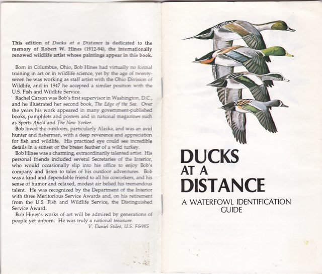 Image for Ducks at a Distance: A Waterfowl Identification Guide