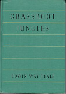 Image for Grassroot Jungles: A Book of Insects (Revised Edition)