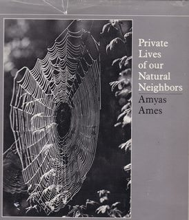Image for Private Lives of Our Natural Neighbors: Twenty-One Photo Essays